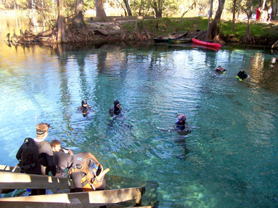 ginnie-springs11