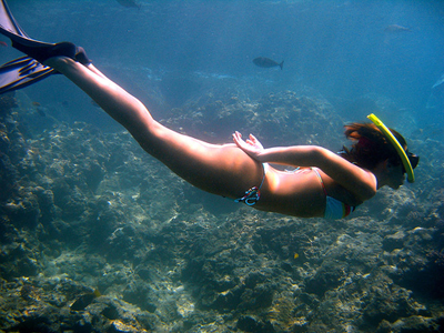 skin diving Archives - Island Images Photography - Hawaii ...